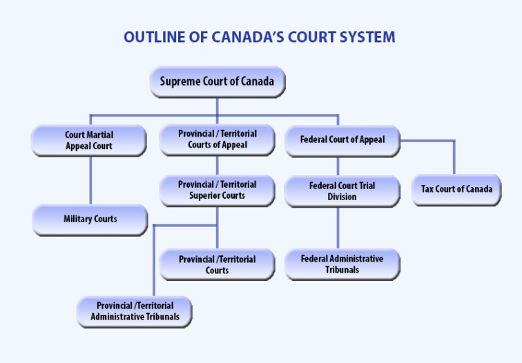 court_system